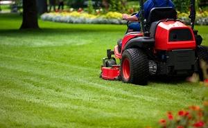 Gartenpflege, Gartenarbeiten